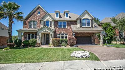 San Antonio TX Single Family Home New: $515,500