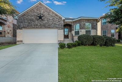San Antonio Single Family Home New: 7835 Kings Spring