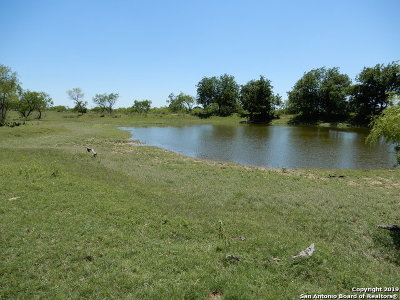 Floresville Farm & Ranch For Sale: 00tbd Fm 539