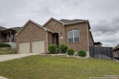 San Antonio TX Single Family Home New: $311,000