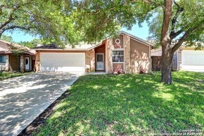 San Antonio TX Single Family Home New: $168,000