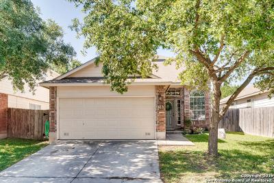San Antonio TX Single Family Home New: $222,700