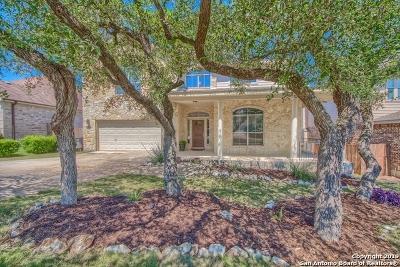 San Antonio TX Single Family Home New: $339,000
