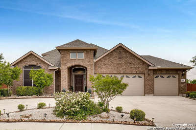 Schertz Single Family Home For Sale: 6941 Laura Heights