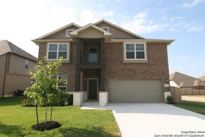 Schertz Single Family Home For Sale: 4683 Grey Sotol Way