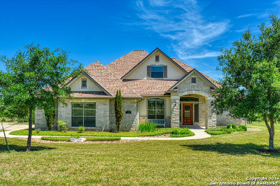 Wilson County Single Family Home For Sale: 124 Abrego Lake Dr
