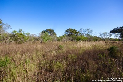 Floresville Residential Lots & Land For Sale: 15 Ac County Road 132
