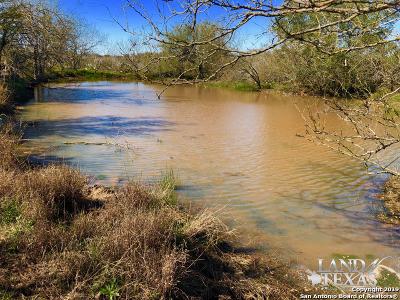 Atascosa County Farm & Ranch For Sale: E Hwy 140