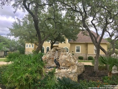 San Antonio Single Family Home For Sale: 1922 Winding View