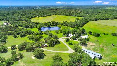 Boerne Farm & Ranch For Sale: 330 Ammann Rd