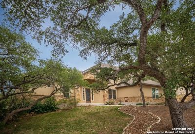 Canyon Lake Single Family Home For Sale: 1742 Mountain Springs
