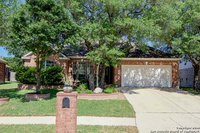 San Antonio Single Family Home For Sale: 4715 River Rock