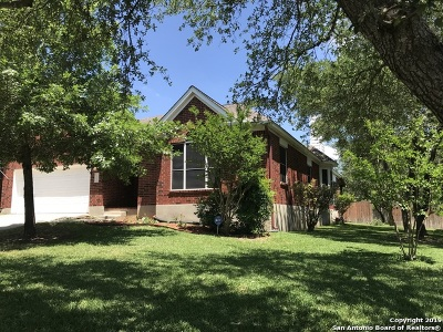 Stone Oak Single Family Home For Sale: 1331 Burning Arrow