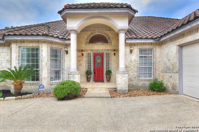 Boerne Single Family Home For Sale: 29019 Tivoli Way