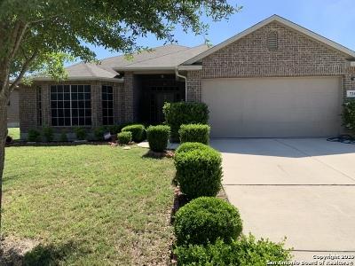 Schertz Single Family Home For Sale: 736 Hollow Ridge