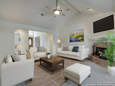 Boerne Single Family Home For Sale: 28416 Royal Ascot Dr