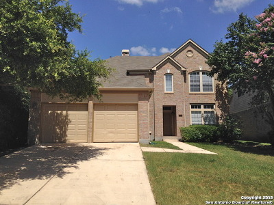 Stone Oak Single Family Home For Sale: 20518 Settlers Valley