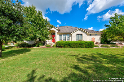 Boerne Single Family Home For Sale: 101 Ledge Springs