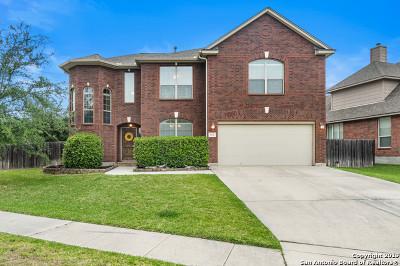 Helotes Single Family Home For Sale: 9031 Arroyo Hondo