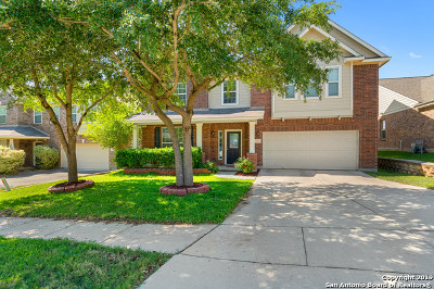 Cibolo Single Family Home For Sale: 130 Carnousty Dr