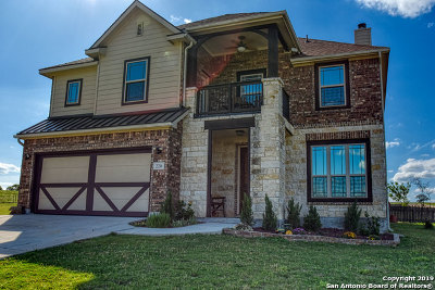 La Vernia Single Family Home For Sale: 220 Scenic Hills Dr