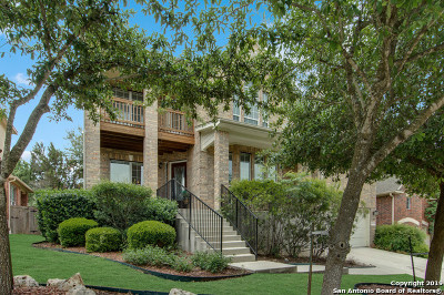 Cibolo Canyons Single Family Home For Sale: 3539 Pinnacle Dr