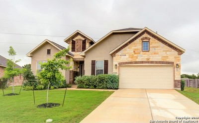 New Braunfels Single Family Home For Sale: 1055 Cedar Glen Dr