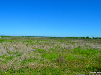 Guadalupe County Residential Lots & Land For Sale: 1640 Wosnig Rd