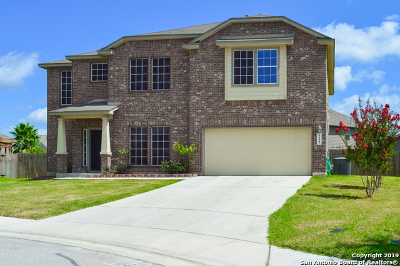 New Braunfels Single Family Home Back on Market: 1127 Sandhill Crane