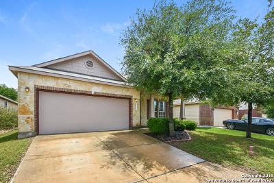 Boerne Single Family Home New: 26214 Presidio Mesa