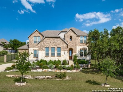 San Antonio Single Family Home Price Change: 25906 Turquoise Sky
