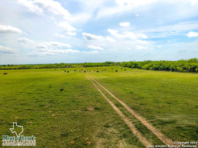 Atascosa County Farm & Ranch For Sale: 11439 Fm 1333