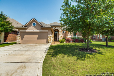 Helotes Single Family Home New: 9727 Helotes Hl