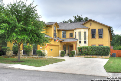 Helotes Single Family Home New: 16314 La Madera Rio