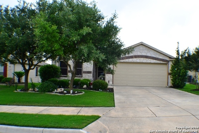 Schertz Single Family Home Active Option: 5333 Storm King