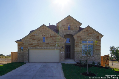 Bexar County Single Family Home For Sale: 1728 Doubleday Ln