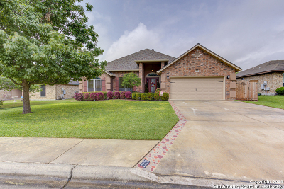 New Braunfels Single Family Home Active Option: 2228 Stonehaven