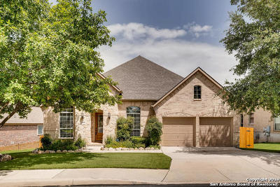 San Antonio Single Family Home Active Option: 26014 Alto Cedro