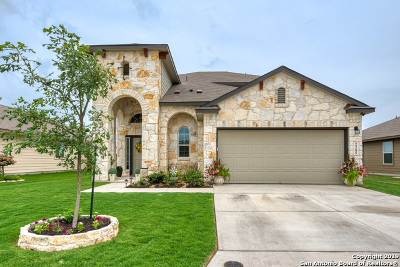New Braunfels Single Family Home For Sale: 2305 Lighthouse Dr