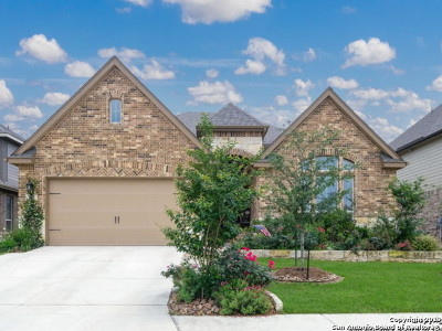 Cibolo Single Family Home New: 460 Turning Stone