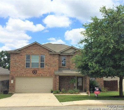 Helotes Single Family Home New: 10715 Bramante Ln