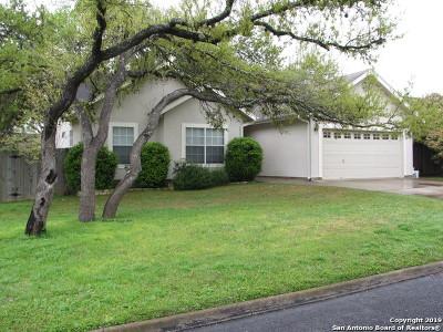 Boerne Single Family Home New: 117 Lehmann St