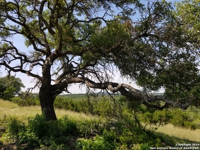 Helotes Residential Lots & Land For Sale: Lot 24 Canyon Rim Private Road