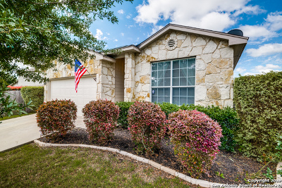New Braunfels Single Family Home Active Option: 213 Roadrunner Ave