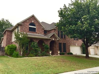 Cibolo Single Family Home For Sale: 117 Brookbend