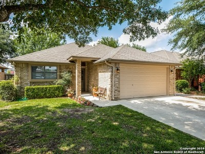Seguin Single Family Home For Sale: 1506 Eastridge Pkwy