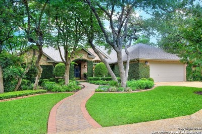 San Antonio Single Family Home New: 17319 Fountain View Dr