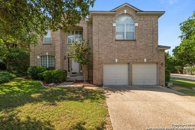 Stone Oak Single Family Home New: 2111 Sunnyside