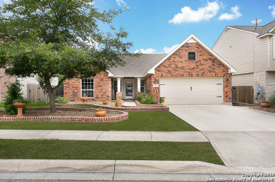 Schertz, Cibolo Single Family Home New: 206 Carnousty Dr
