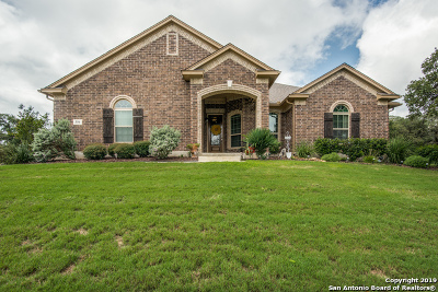 Castroville Single Family Home For Sale: 356 Barden Pkwy